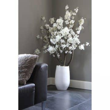 Witte Bloesemboom Dubbel ± 150 cm (incl witte pot)